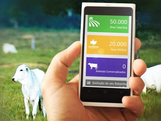 dados online da fazenda