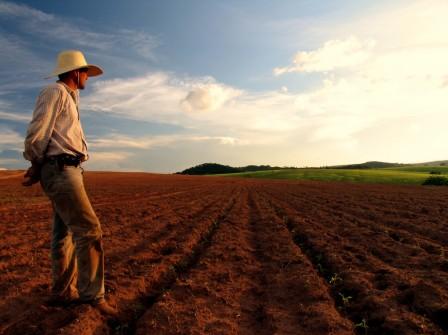 perfil do produtor rural