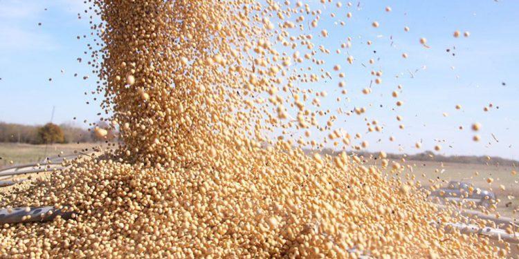 produção de grãos