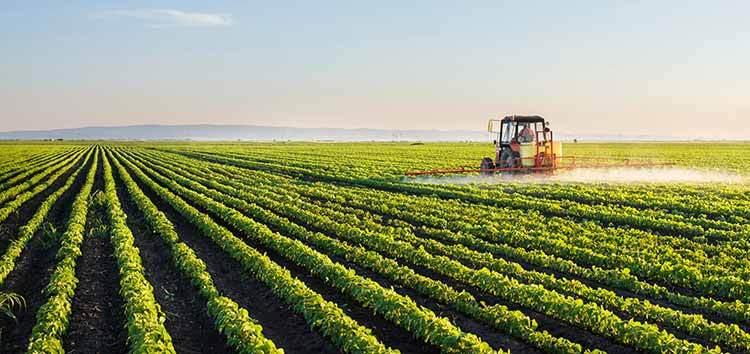 terras agricultáveis no mundo