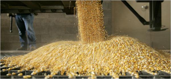 etanol do milho
