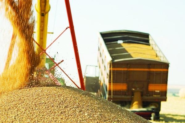 logística de transporte de grãos