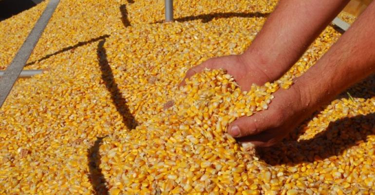 exportações de milho