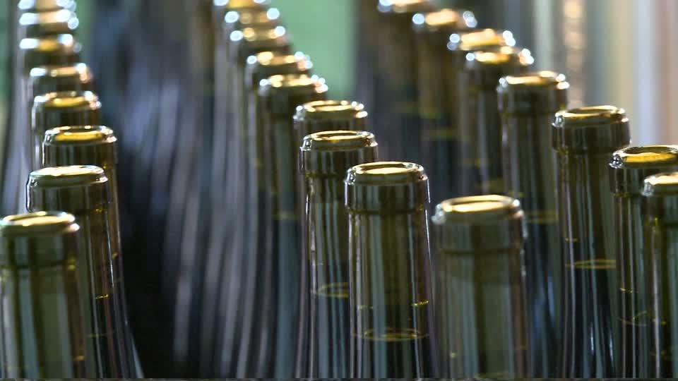 produção mundial de vinhos