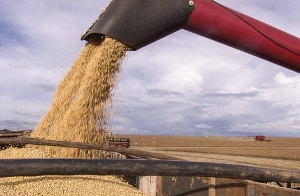 escoamento de grãos