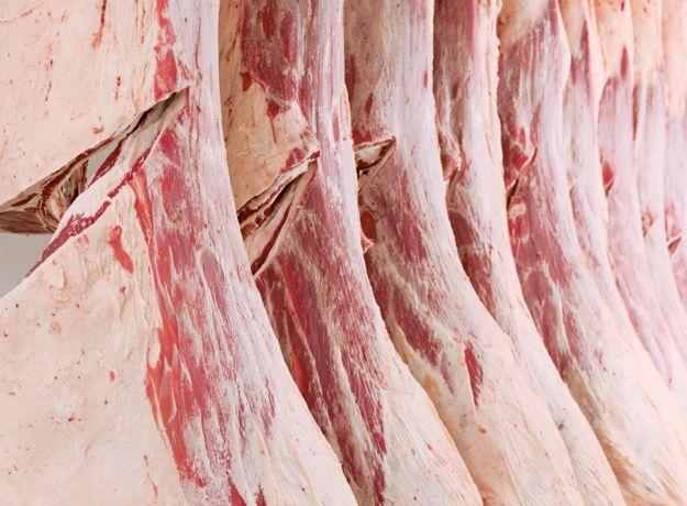 preço da arroba da carne