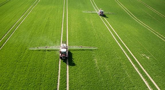 agricultura nos Estados Unidos
