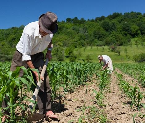pequenos produtores rurais