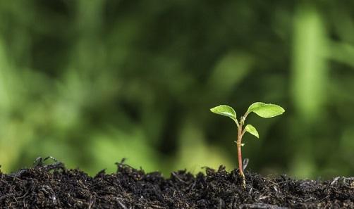 adequação ambiental