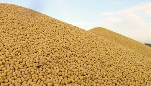 preços dos grãos