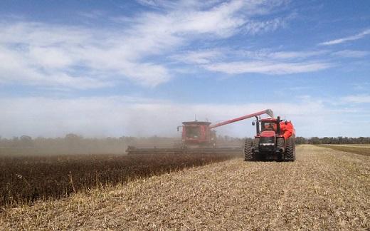 investimento chinês no agronegócio