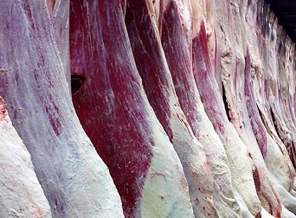 evolução da produção mundial de carnes