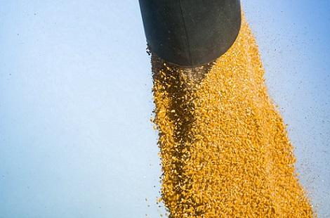 exportações de milho dos EUA