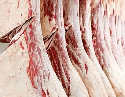carne bovina australiana