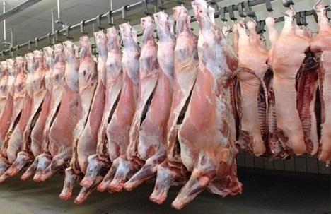 exportação de carnes