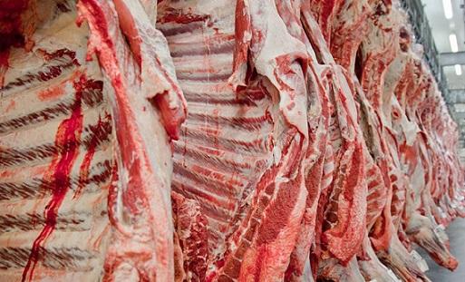 produção de carne bovina