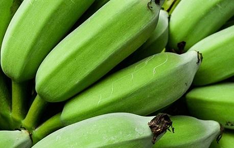 farinha de banana-verde