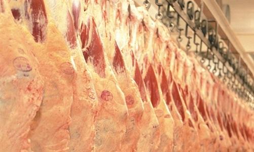preços da carne bovina