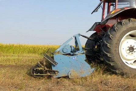 produtividade do trabalho no agro