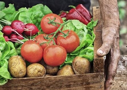 mercado de alimentos orgânicos
