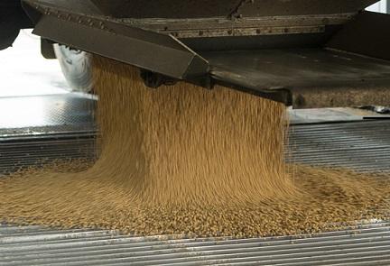 exportação de soja brasileira