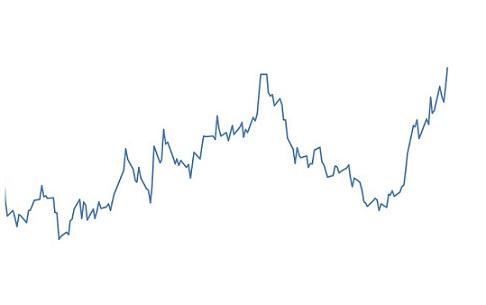 dólar alcança maior valor