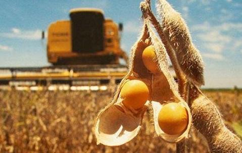exportação de soja do Brasil