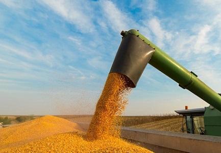 exportação de milho do Brasil