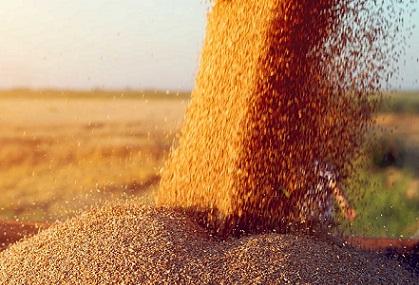 estoque mundial de milho