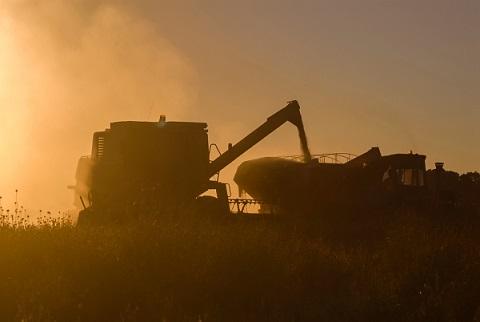 potencial de exportação do agronegócio