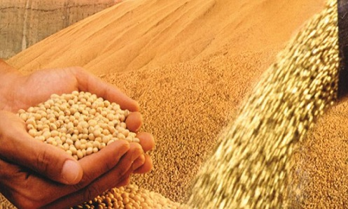 impactos no agronegócio