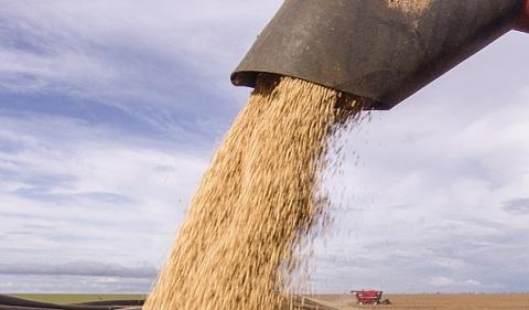 exporação de soja