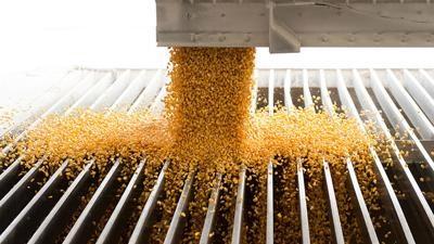 preços corrigidos do milho