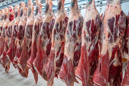 carne do Brasil