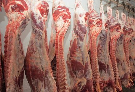 importadores de carne bovina brasileira