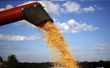 preço mensal do milho