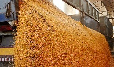 compra de soja do Brasil pela China