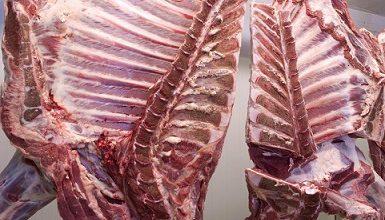 importação de carne bovina pela China