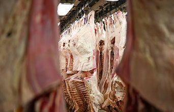 maiores exportadores de carne bovina